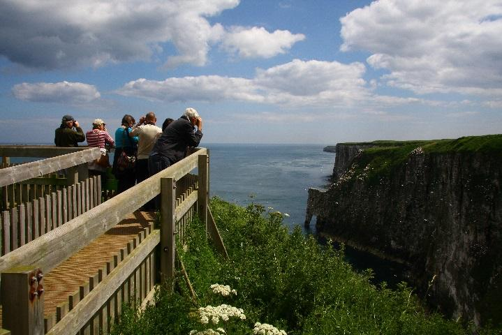 W:\NCTA\Discover England Fund Round 2\PR\Images\Nature\RSPB Bempton Cliffs - New Roll up viewpoint (002).jpg