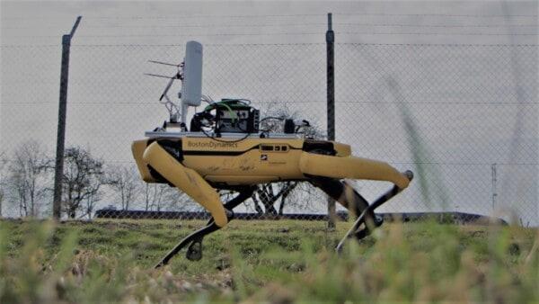 Spot the robot patrols HCA Airport perimeter fencing.