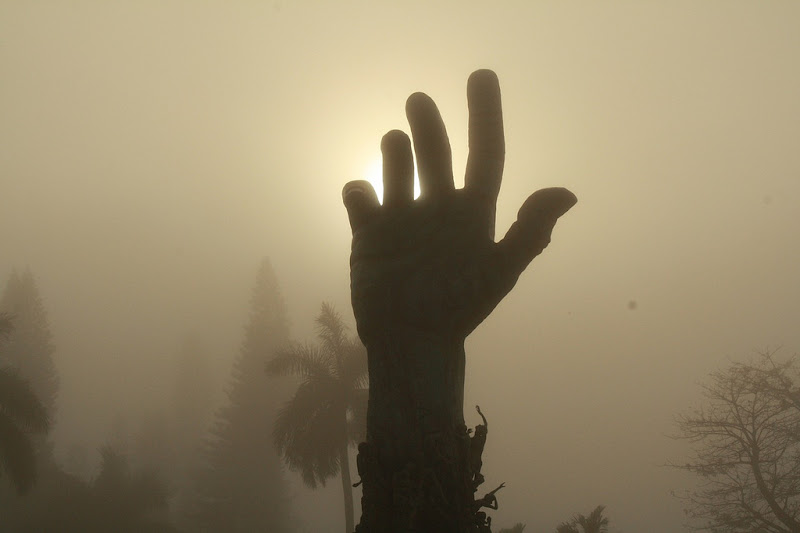 Hand from the fog