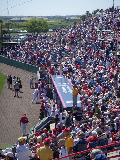 Nationals dugout and the crowd.