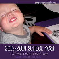 2013-2014 homeschool plans for a large family