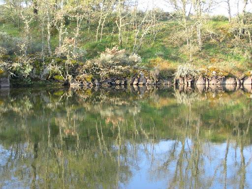 Valla de piedra en el agua