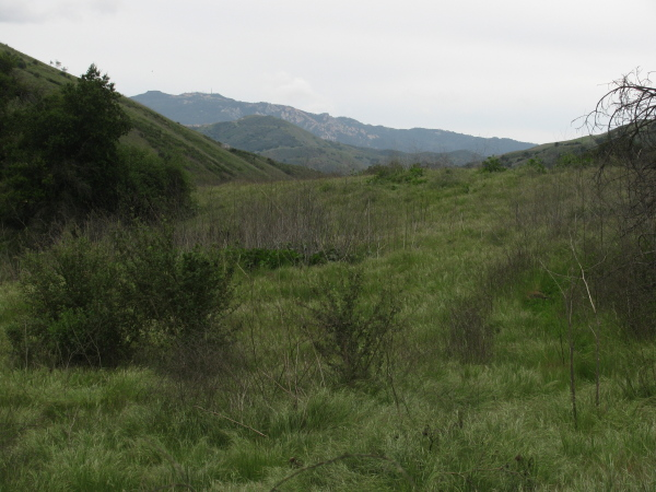 hills to the south