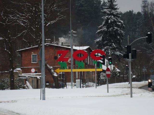 Zoo już coraz bliżej!