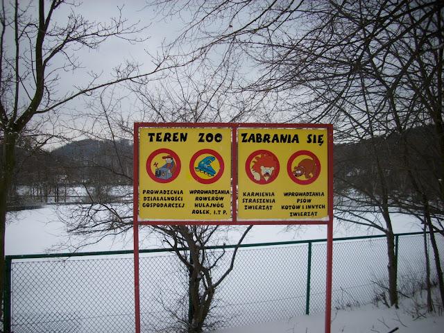 Na szczęście zakaz nie obowiązuje pluszowych mrówkojadów...