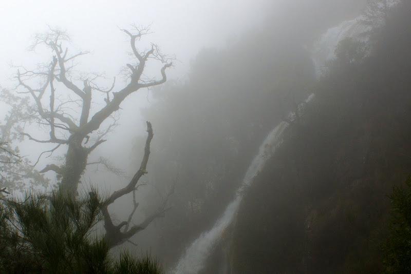 Nevoeiro em Leonte, Gerês