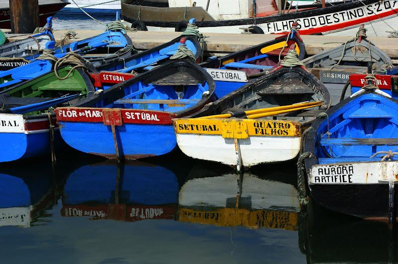 Botes de pesca em Setúbal