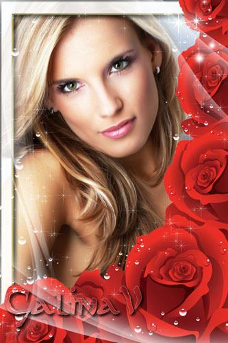 Рамку для фото - Розы в росе