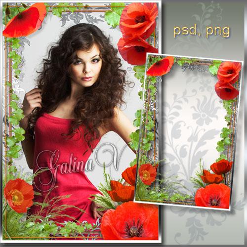 Рамка для фото - Красные маки, символ женского очарования