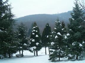 Snežna Avala