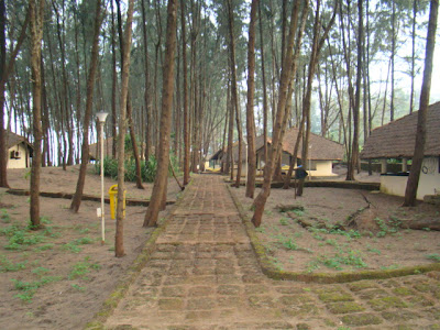 Tarkarli – Where the land ends and the Sea begins