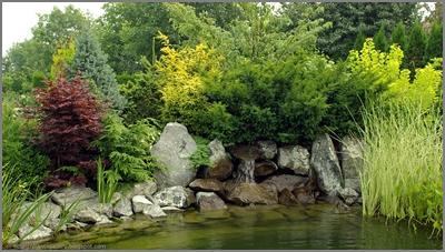 ogród, garden, oczko wodne, wodospad