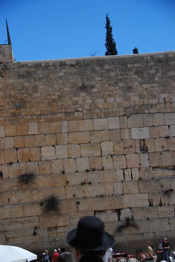 صور من الضفة الغربية والقدس بعيون كاميرا امواج الاندلس DSC_6391