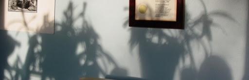 Shadows MISCshadows15