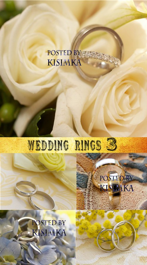 Stock Photo: Wedding rings 3