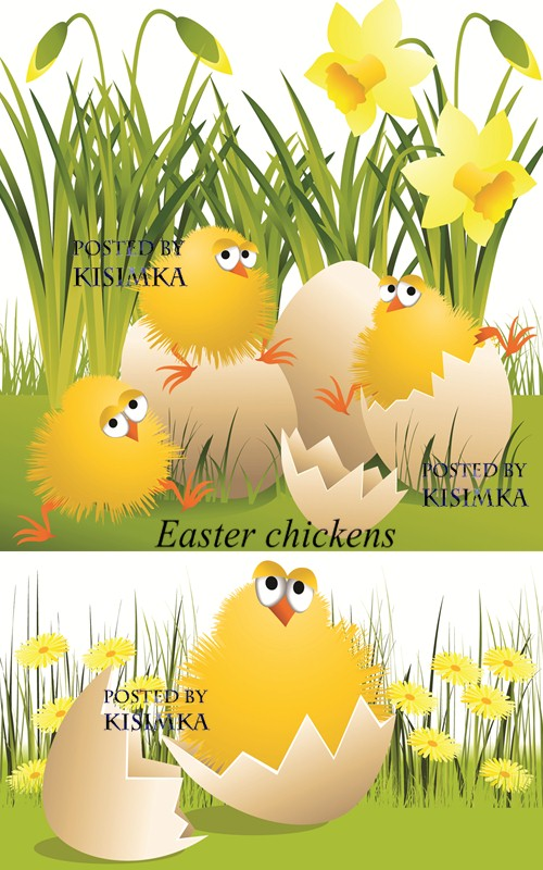 Stock: Easter chickens 2