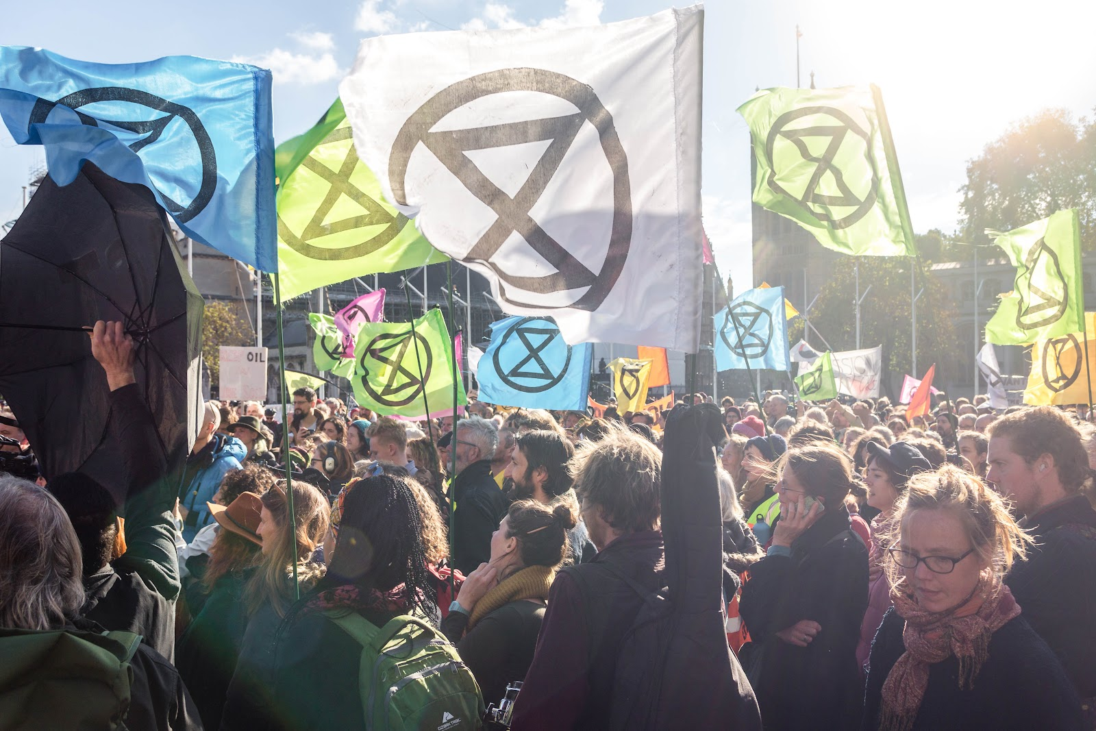 A crowd of XR rebels with Extinction Symbol flags at an assembly.