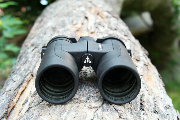 A pair of binoculars resting on a log