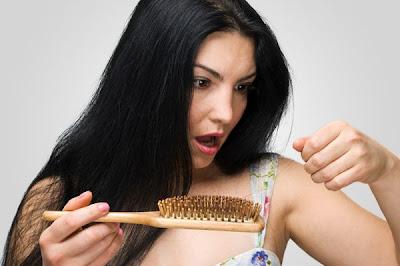抜け毛や白髪の原因で髪の幹細胞生成に必要なタンパク質が解明