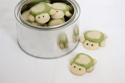 photo of turtle sugar cookies in a tin