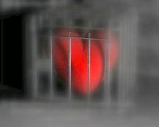 O som do coração