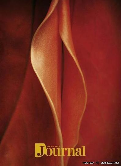 Seksuali rekalama