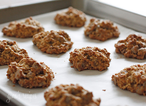 Sugar And Fat Free Oatmeal Cookies - Latest Cooking Recipe
