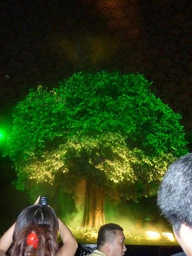 Obra teatro Wuxi, árbol bajo el cual Siddhartha se convirtió en Buda