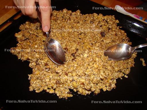 Barritas de cereal (las mejores estas) DSC03533