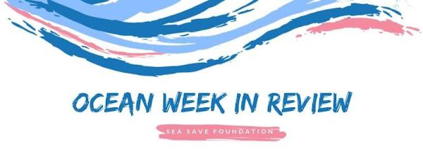 Ocean Week In Review 1
