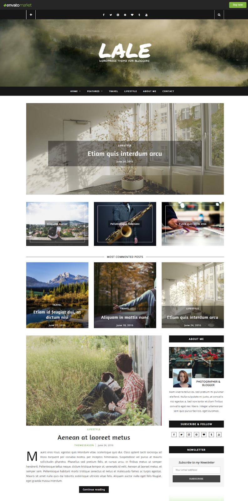 Best WordPress Instagram Themes Lale
