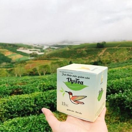 Kết quả hình ảnh cho vy tea