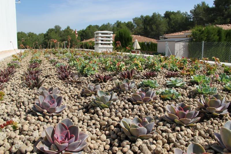 Cubierta ecológica Valencia.