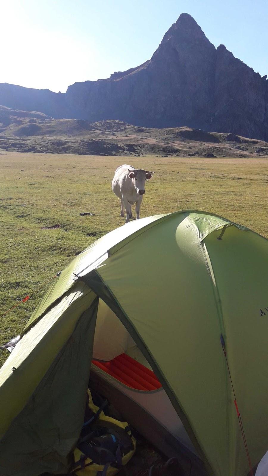Acampada en el Pirineo