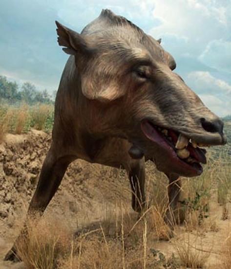 8 Most Dangerous Extinct Animals ~ krazyQ80