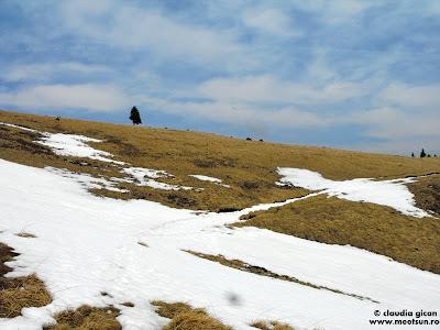 Muntii Ciucas. Geometrie pe munte