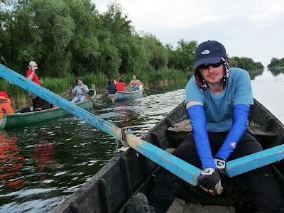 vaslind pe canale in Delta Dunarii