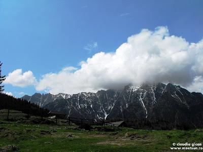de la stanga la dreapta: Costila(foarte putin), Morarul, Bucsoiu