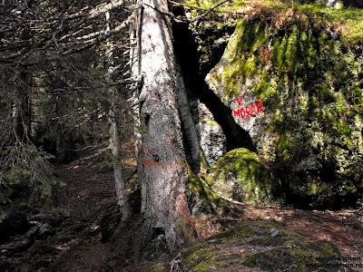 Bucegi - intrarea pe Valea Morarului din TR