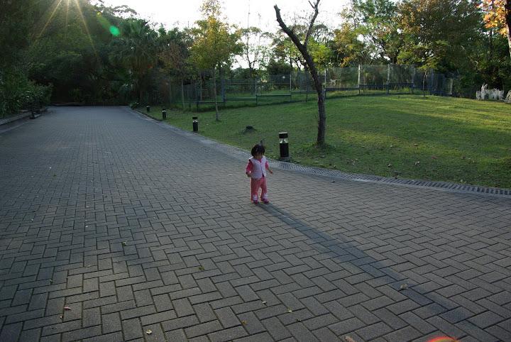 動物園小朋友連拍
