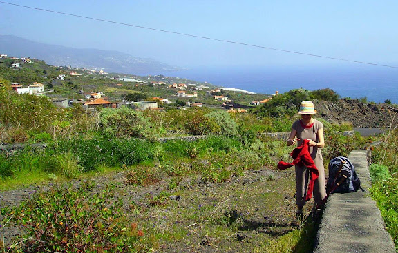 Beim Abstieg zum Meer,La Palma,Kanaren