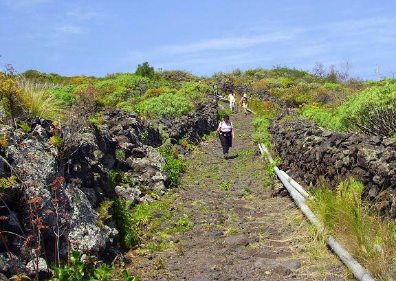 Wandern auf altem Camino,La Palma,Kanaren
