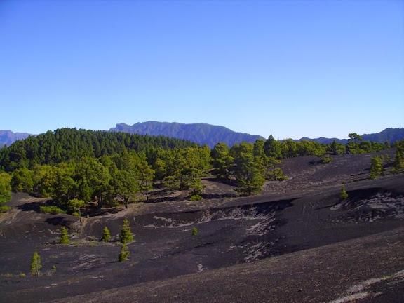 Die ersten Lava Hügel einer Hochebene es ist die Llanos de Jable,La Palma,Kanaren