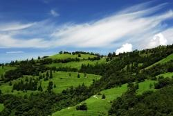 雲蘆休閒農莊