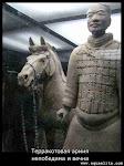 Terracotta_Horse.jpg