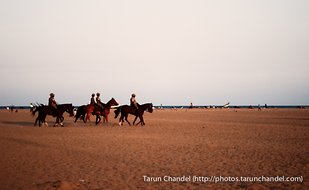 Marina Beach Chennai Horses, Tarun Chandel Photoblog