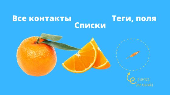 клетка апельсина