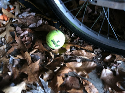 Tennis ball leaves garage photo