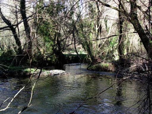 Paseo por el Rio Mandeo R%C3%ADo-Mandeo-6-el-rio