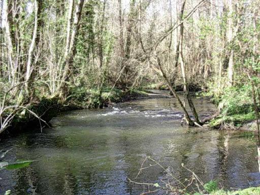 Paseo por el Rio Mandeo R%C3%ADo-Mandeo-11-el-rio